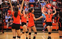 Tigers Nearly Perfect En Route To Fifth Consecutive District Title