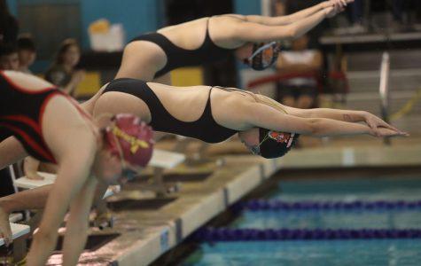 The Tigers swim team has 12 returning state qualifiers this season.