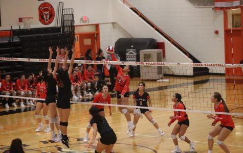 The Tiger volleyball team defeated El Dorado in three sets during their Aug. 27 match. The Tigers are currently in second place of the 1-5A district ranks.